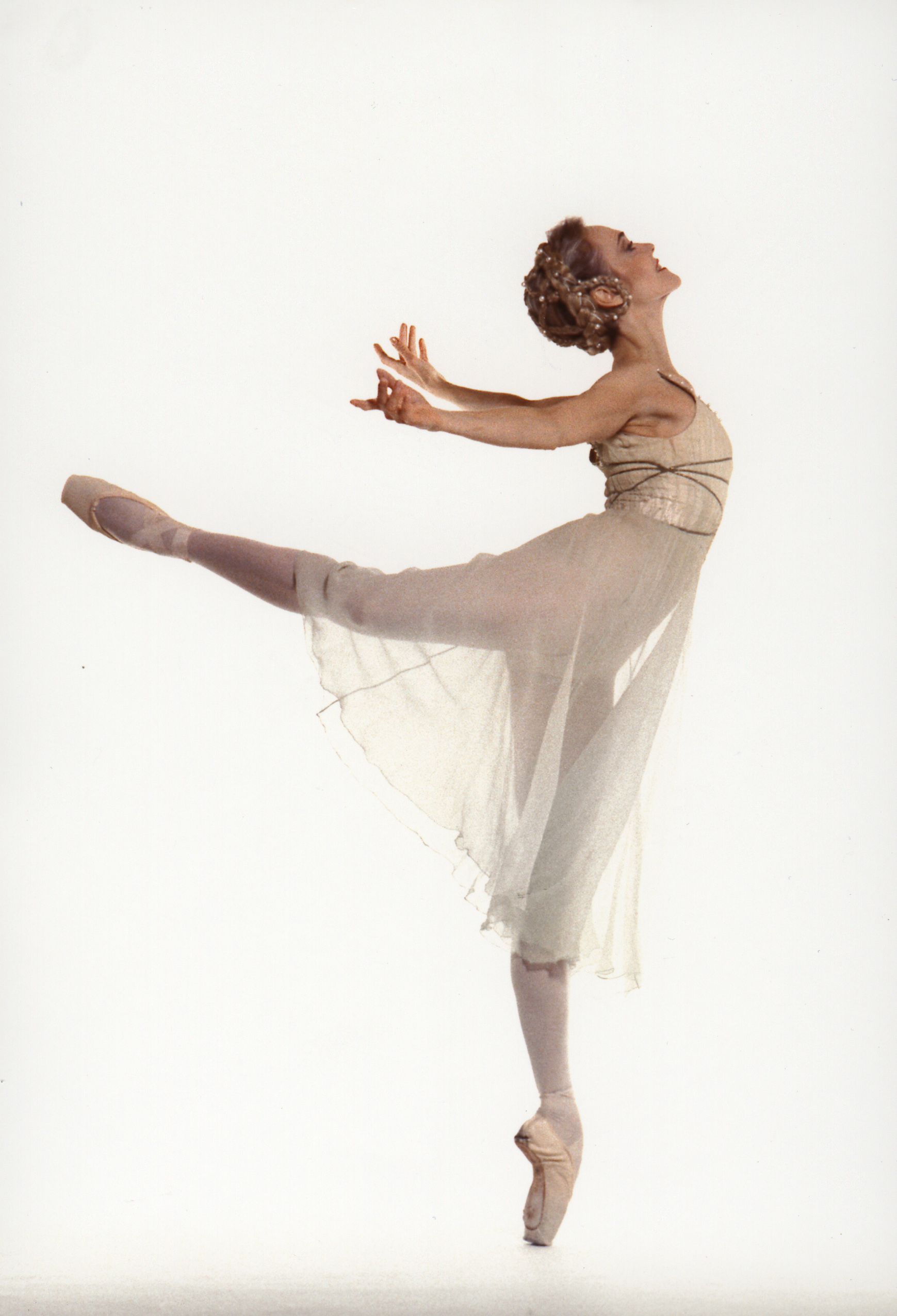 Prima Ballerina Absolute on Pinterest